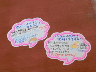 CIMG9516.JPG