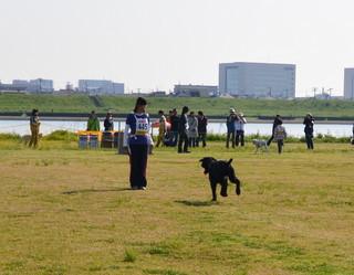 DSC_1467-001.JPG